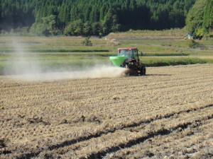 秋肥の散布